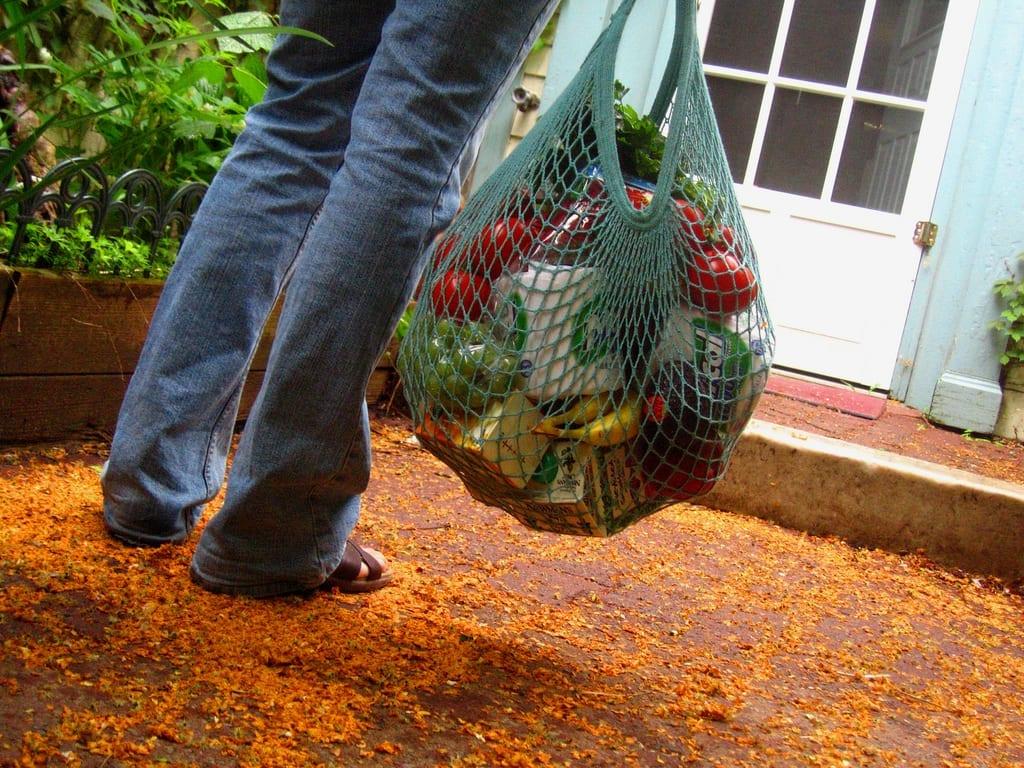 Les sacs de plastique minces sont maintenant interdits à Saint-Bruno… Attention aux bactéries!