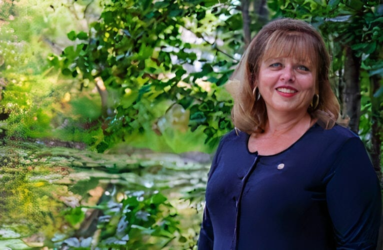 La conseillère Louise Dion quitte l'Alliance municipale