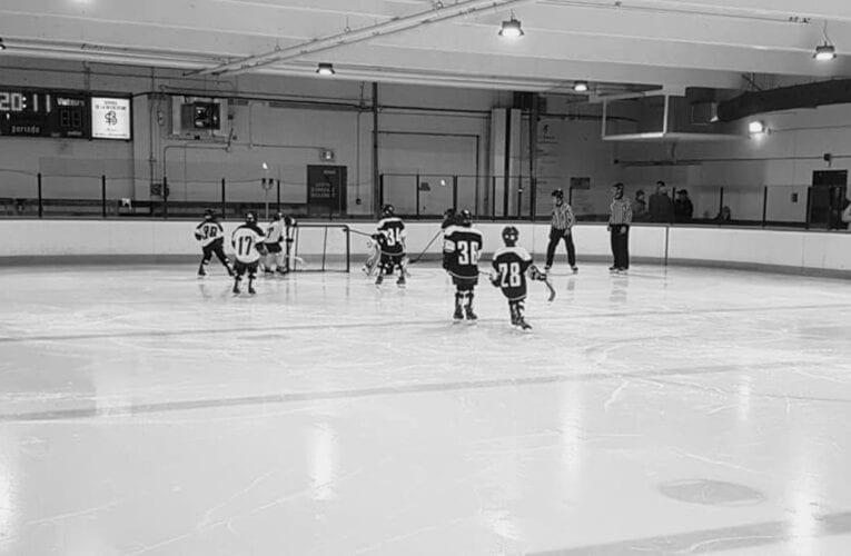 L'Association du hockey mineur annonce l'annulation de la saison