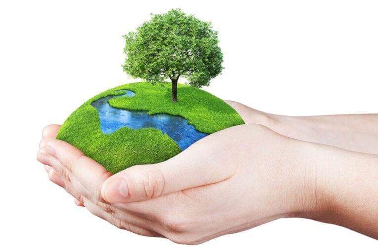 Le Jour de la Terre 2021 à Saint-Bruno